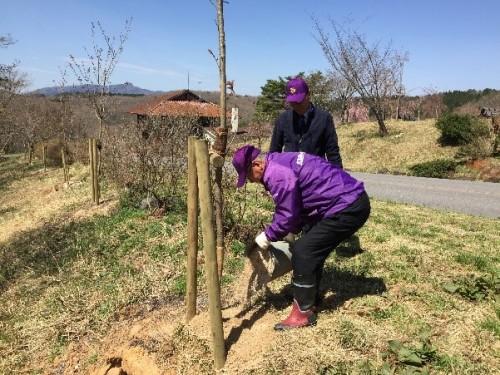村上会長による追加植樹の様子
